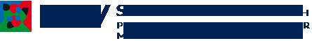 bsv-schmidhammer-logo